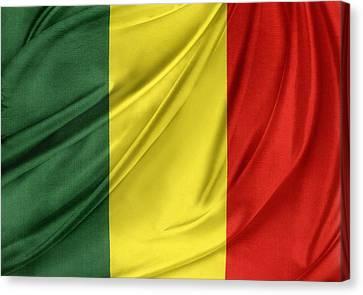 Mali Flag Canvas Print by Les Cunliffe