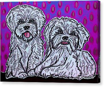 Maltese Duo Pink Bg Canvas Print by Cynthia Snyder