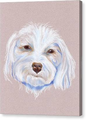 Maltipoo With An Attitude Canvas Print by MM Anderson