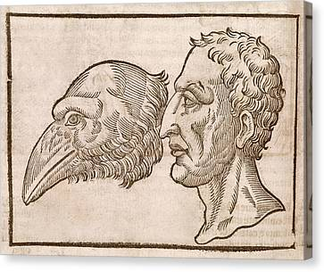 Man And Crow's Head Canvas Print by Middle Temple Library