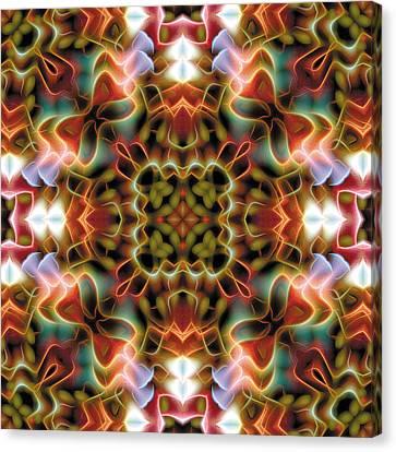Mandala 120 Canvas Print by Terry Reynoldson