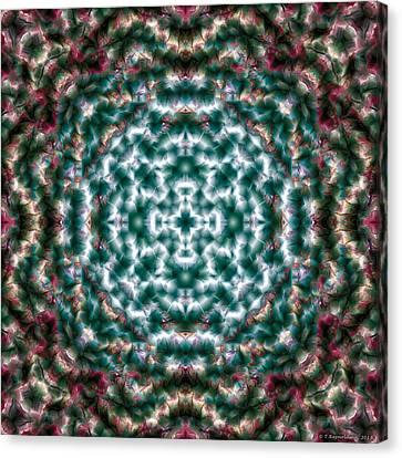 Mandala 122 Canvas Print by Terry Reynoldson