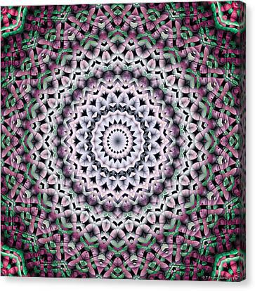 Mandala 38 Canvas Print by Terry Reynoldson
