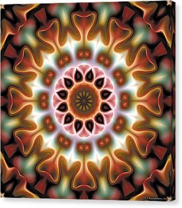 Mandala 67 Canvas Print by Terry Reynoldson