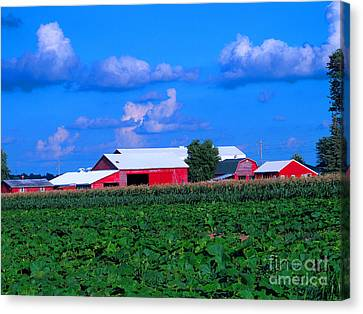 Many Layers Of Sights To Behold Canvas Print by Tina M Wenger