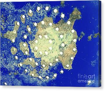 Map Coordinates Land And Sea Abstract Canvas Print by Ella Kaye Dickey