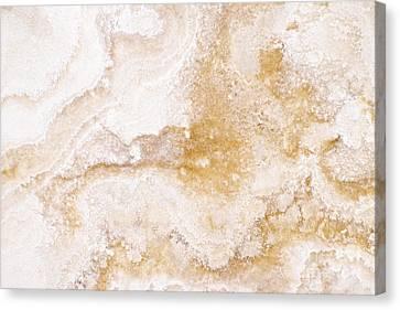 Marble Canvas Print by Elena Elisseeva
