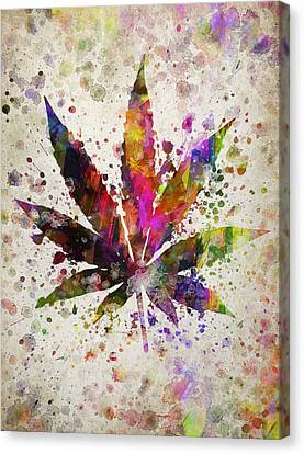 Marijuana Leaf In Color Canvas Print by Aged Pixel