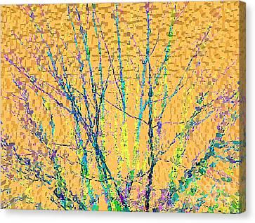 Marmalade Sky Canvas Print by Ann Johndro-Collins