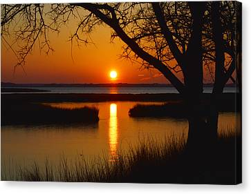 Ocean City Sunset At Old Landing Road Canvas Print by Bill Swartwout