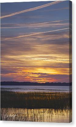 Marsh Sunset Canvas Print by Phill Doherty