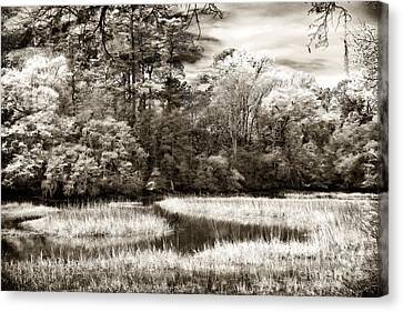 Marshes Canvas Print by John Rizzuto