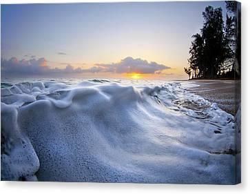 Marshmallow Tide Canvas Print by Sean Davey