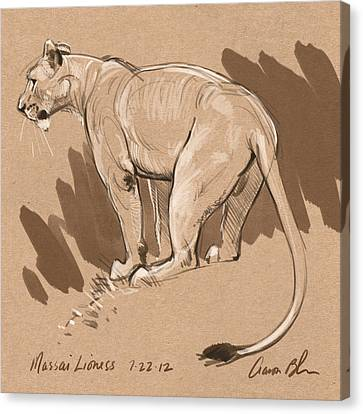 Masai Lioness Canvas Print by Aaron Blaise