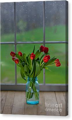 Mason Jar With Tulips Canvas Print by Kay Pickens