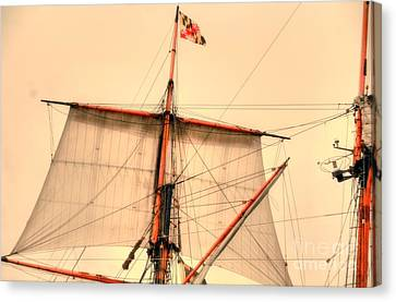 Mast Canvas Print by Kathleen Struckle
