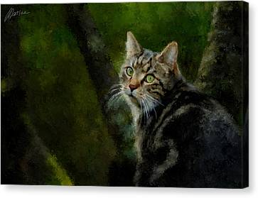 Master Of Disguise Canvas Print by Marina Likholat