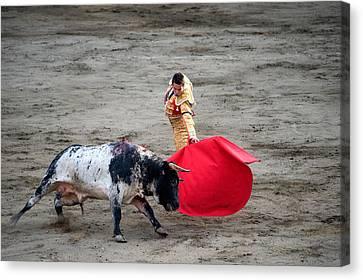 Matador And A Bull In A Bullring, Lima Canvas Print by Panoramic Images