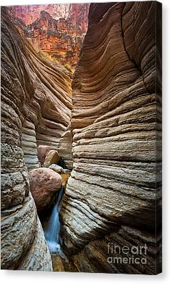 Matkatamiba Canyon Canvas Print by Inge Johnsson