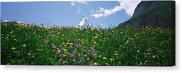Matterhorn Switzerland Canvas Print by Panoramic Images