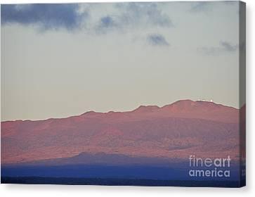 Mauna Kea Volcano At Sunrise From Hilo Canvas Print by Sami Sarkis