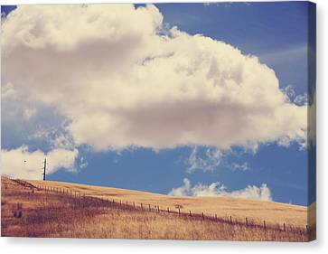 Maybe Far Away Canvas Print by Laurie Search