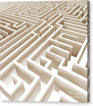 Maze Canvas Print by Stefano Senise