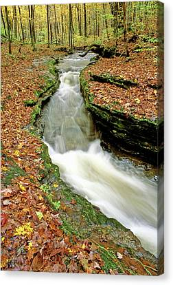 Mcconnells Mill State Park Canvas Print by Cyril Furlan