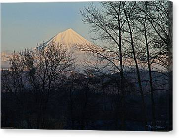 Mclaughlin Late Winter Day Canvas Print by Mick Anderson