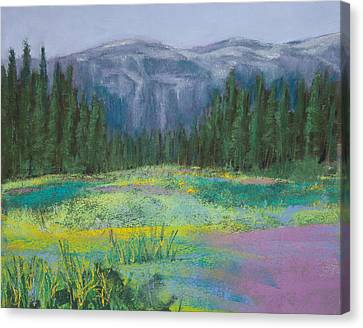 Meadow In The Cascades Canvas Print by David Patterson