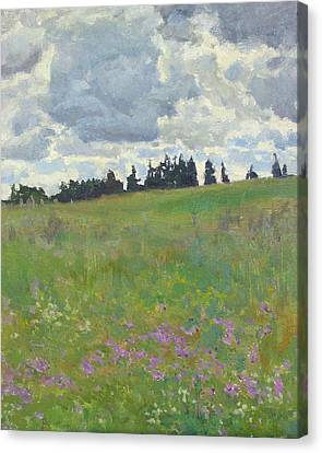 Meadow Is Blooming Canvas Print by Victoria Kharchenko