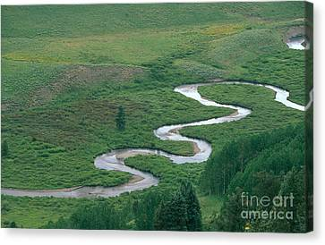 Meandering East River Canvas Print by David Davis