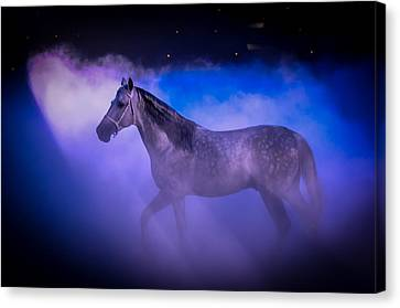 Medieval Times Tournament Horse Canvas Print by Gene Sherrill
