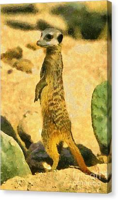 Meerkat Canvas Print by George Atsametakis