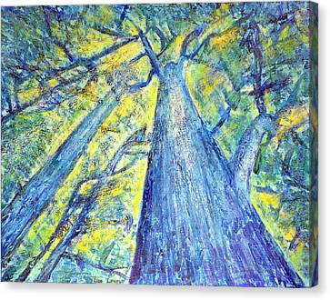 Meet Me By The Tree Canvas Print by Tim Leung