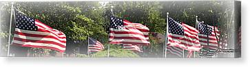 Memorial Day Canvas Print by James Barrere