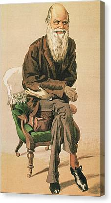 Men Of The Day, No. 33, Charles Darwin, Cartoon From Vanity Fair Canvas Print by .