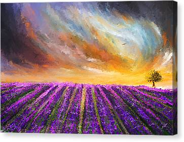 Menacing Beauty - Lavender Fields Paintings Canvas Print by Lourry Legarde