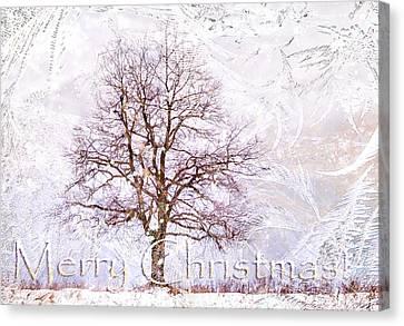 Merry Christmas Canvas Print by Jenny Rainbow