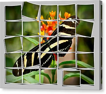 Messed Up Butterfly Canvas Print by Jean Noren