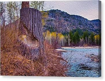 Methow Riverbank Canvas Print by Omaste Witkowski