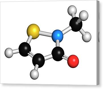 Methylisothiazolinone Preservative Canvas Print by Molekuul