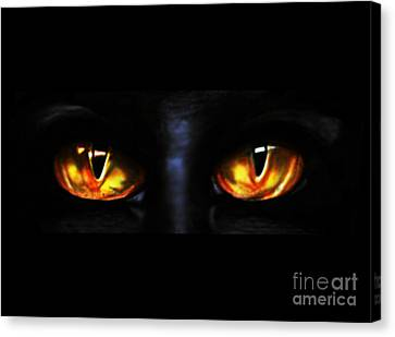 Mezmereyes Canvas Print by Derrick Rathgeber