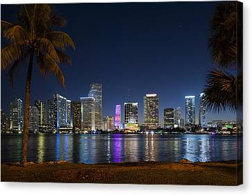 Miami Skyline Canvas Print by Domenik Studer