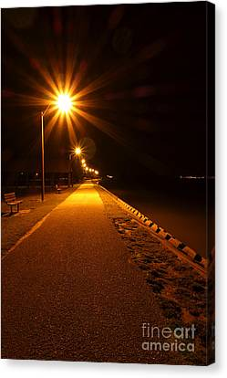 Midnight Walk Canvas Print by Olivier Le Queinec
