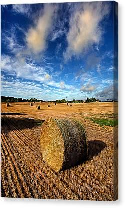 Midsummer Harvest Canvas Print by Phil Koch