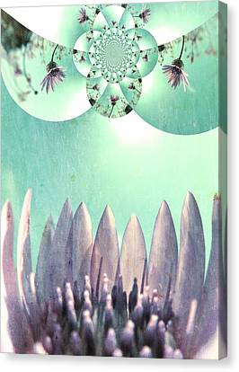 Midsummer Vision Canvas Print by Marianna Mills