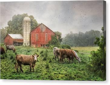 Mifflintown Farm Canvas Print by Lori Deiter