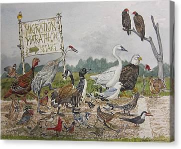 Migration Marathon Canvas Print by Christopher  Cudworth