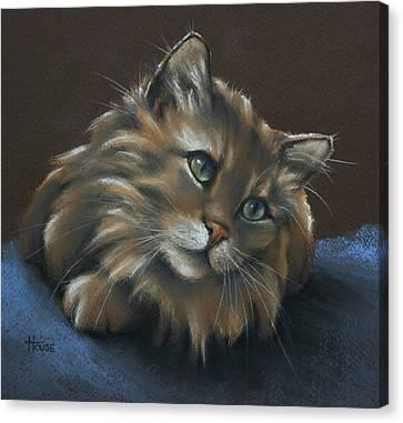 Miko Canvas Print by Cynthia House